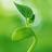 caozha-admin(PHP网站后台管理框架)v1.7.1免费版